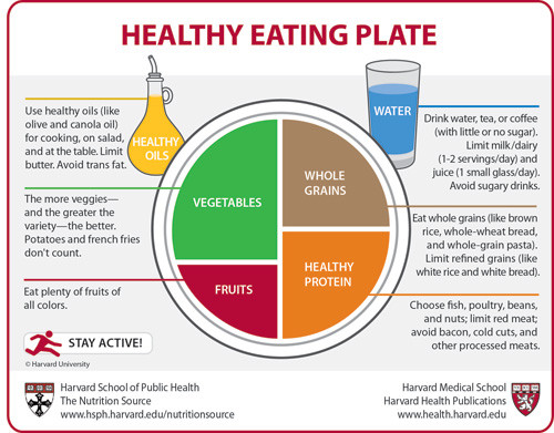 diet planning principles include